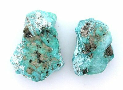 27.8 Grams Two Sonoran Blue Turquoise Slice Slab Cabochon Gemstone Rough B17A103