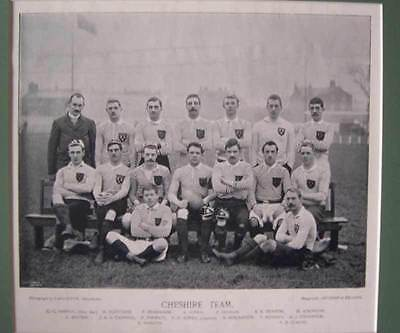 Cheshire Rugby Team Genuine Antique Print 1895 Famous Footballers