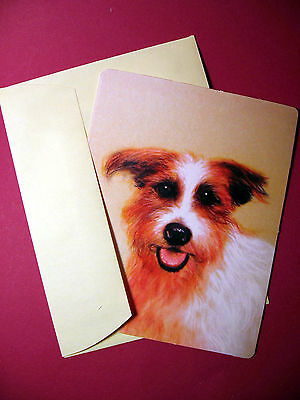"""Jack Russell Terrier"" Single Dog Greeting Card -Blank Note Card - sku# 34"