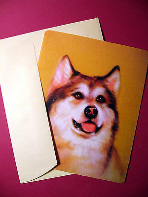 """Alaskan Malamute"" Single Dog Greeting Card -Blank Note Card - sku# 35"
