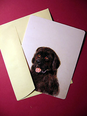 """Newfoundland"" 1 - Dog Greeting Card - Blank Note Card - sku# 64"
