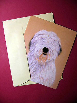 """Old English Sheepdog"" 1 - Dog Greeting Card - Blank Note Card - sku# 48"