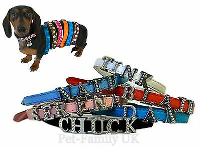 Personalized dog puppy cat pet collar XS S M 8 MM FREE letters ( up to 6 ) new