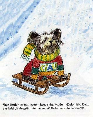 Skye Terrier Sled M - German Dog Print - MATTED / NEW