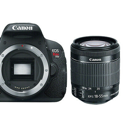 Canon EOS Rebel T5i Digital SLR Camera + EF-S 18-55mm f/3.5-5.6 IS STM Lens