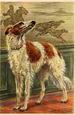 Borzoi - MATTED Dog Art Print - German / NEW U