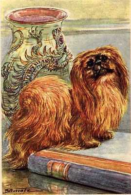 Pekingese - MATTED Dog Art Print - German / NEW U