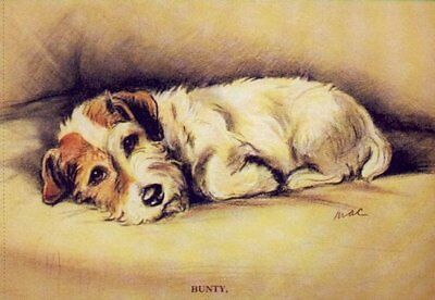 "Sealyham ""Bunty"" - MATTED Dog Print - Lucy Dawson NEW"