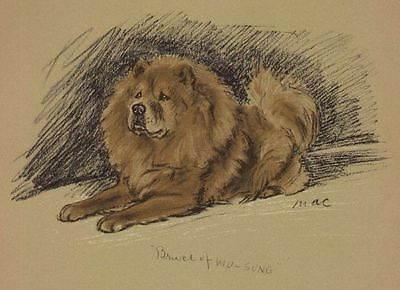 Chow Chow - Lucy Dawson Dog Print - MATTED