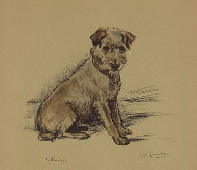 Jack Russell / Border Terrier - Lucy Dawson Dog Print