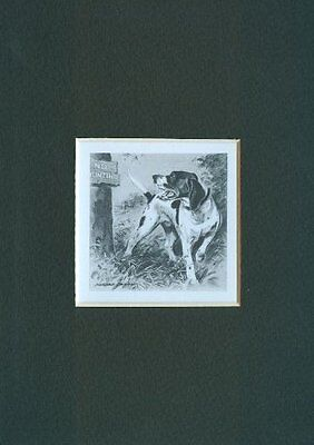 ** Pointer - Dog Print - M. Dennis CLEARANCE