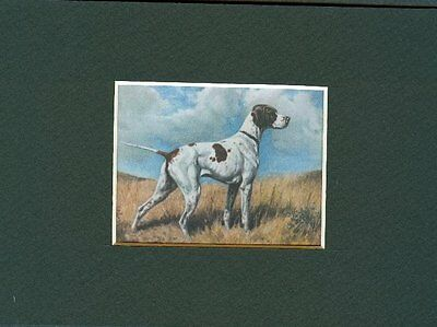 - Pointer - Dog Art Print - Megargee CLEARANCE