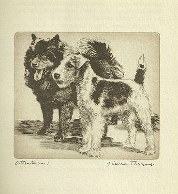 Chow / Fox Terrier - Vintage Dog Print - 1936 Diana Thorne