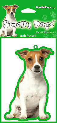 Jack Russell Terrier (c) Fragrant Air Freshener Perfect Gift