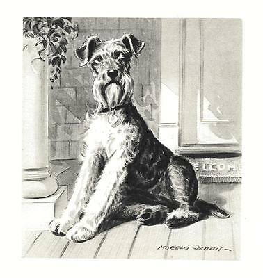 Airedale Terrier - Morgan Dennis Dog Print - MATTED