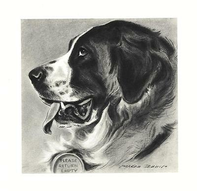 Saint Bernard - Morgan Dennis Dog Print - MATTED