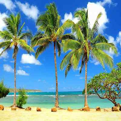 Tropical beach 10'x10' CP Backdrop Computer printed Scenic Background ZJZ-866