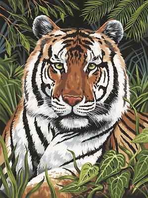 Jungle Tiger In Hiding Close Up Painting A4 Paint By Numbers & Brush Pjs75