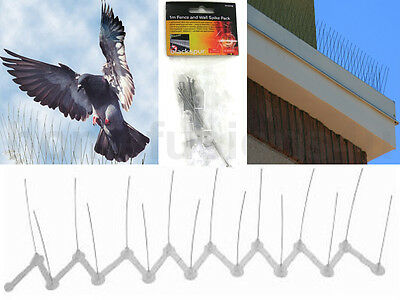 2/4/6/8/10M Anti Perch Bird Pigeon Seagull Repeller Defender Fence Wall Spikes
