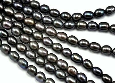 2.8-3mm Tiny Peacock Black Rice Oval Freshwater Seed Pearls Beads A