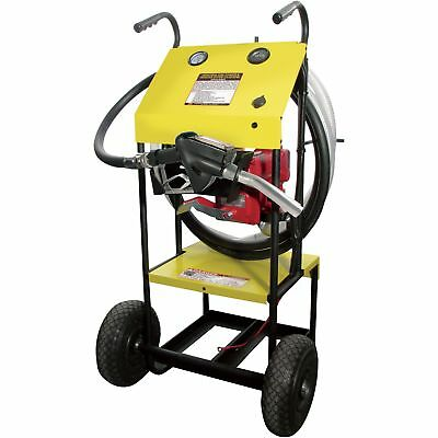 IPA Portable Industrial Fuel Cleaner and Transfer System-1/4 HP Pump #DTP20C