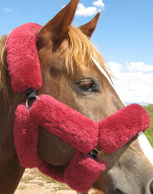 Just Merino Sheepskin 9 piece Shipping Halter Covers Pads Horse Choice 10 Colors