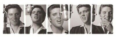 ELVIS PRESLEY ~ STUDIO SINGING POSES SLIM 12x36 MUSIC POSTER The King NEW/ROLLED