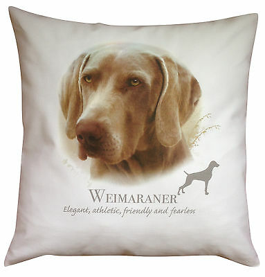 Weimaraner Breed of Dog Cotton Cushion Cover with Story - Perfect Gift