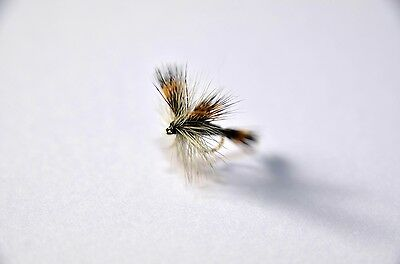 GINGER QUILL Dry Fly Trout /& Grayling fly Fishing flies by Dragonflies