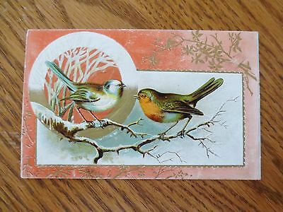 1800s Lion Coffee Woolson Spice Ohio Embossed Picture Trade Card Embossed Birds