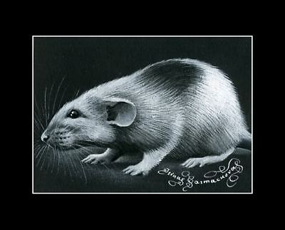 Rat ACEO Print Patchy by I Garmashova