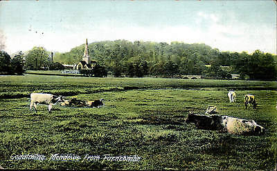 Godalming Meadows from Farncombe # 57619 by Frith.