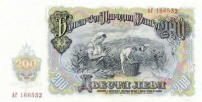 BULGARIA (1951 )  200 LEVA  BANK NOTE in a Protective Sleeve , large note