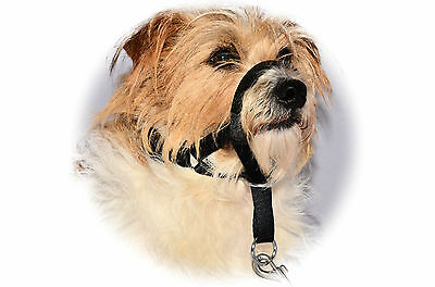 HALTI STYLE HALTER PUPPY DOG STOPS PULLING COLLAR TRAINING  Head Muzzle Clip On