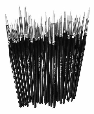 50 Round Sable Paint Brushes Sizes 0 2 4 6 8 10 School Bulk Pack Artist College