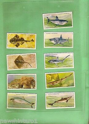 #D129. 1935 SEA FISHES  CIGARETTE CARDS, 45 of 50