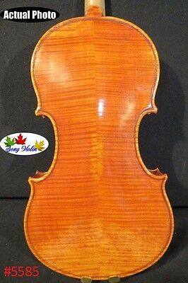 Copy old finishes Strad style Maestro violin4/4,huge and powerful sound#5585
