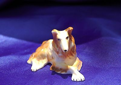vintage Ruff coated Collie dog with front paws together.  nice herding dog!