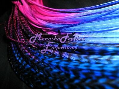 Feather extensions 10 grizzly solid tie dye multi rooster royal blue hot pink