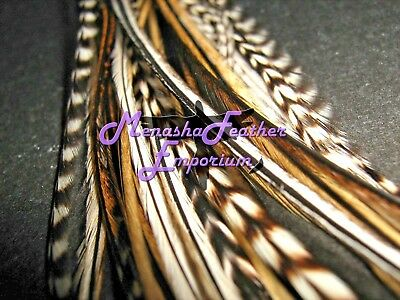 Feather hair extensions 20 NATURAL Badger GRIZZLY MIX 100% Real Saddle Hackle