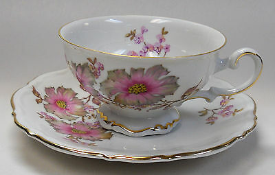 MITTERTEICH china DOGWOOD/AUTUMN LEAVES 4376 pattern Cup & Saucer
