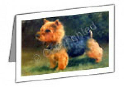 Boxed Note Cards (MB081) - Norwich Terrier