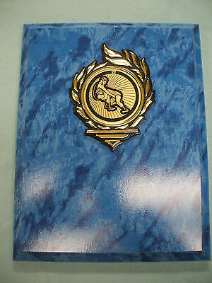 WRESTLING plaque 7 x 9 blue marble finish gold mylar insert