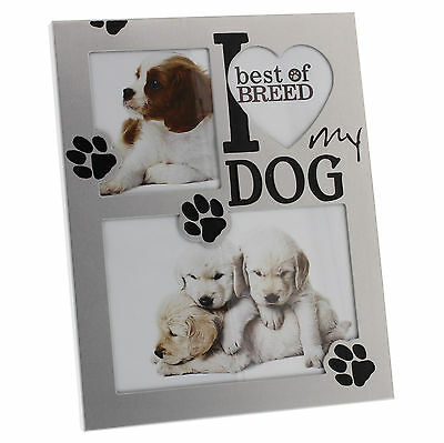 I Love My Dog Photo Frame Gift FA129D