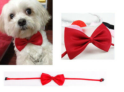 Cute Pet Dog CatMulticolor Bowknot Tie For Fashion Bow-tie Pet Accessories  RED