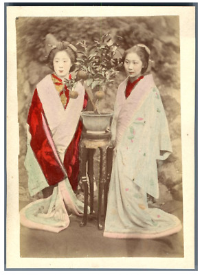 Japon, Girls in the Garden Vintage albumen print. Tirage albuminé aquarellé