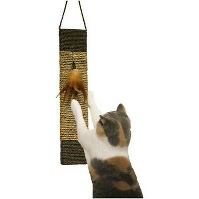 Rosewood Scratch & Play Griffoir à Herbe à Chat - (Jolly Moggy) Scratch NEUF
