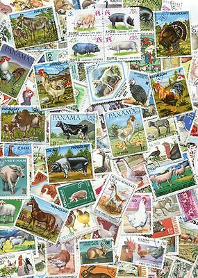 Fine Collection Of 100 Different Farm Animals - Horses - Cows - Chickens - Goats