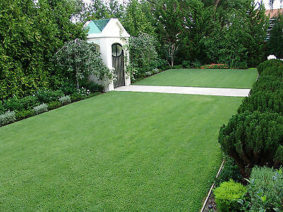 Oxford 25mm Astro Artificial Landscaping Grass Realistic Natural Fake Turf