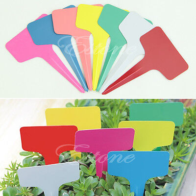 100pcs 6 x10cm Plastic Plant Pot Markers Garden Nursery Stake T-type Tags Labels
